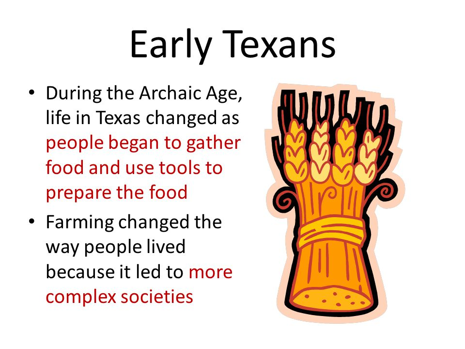 Early Texans During the Archaic Age, life in Texas changed as people began to gather food and use tools to prepare the food Farming changed the way people lived because it led to more complex societies