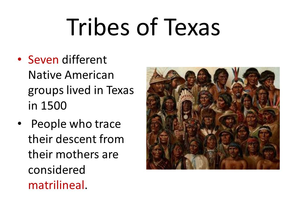 Tribes of Texas Seven different Native American groups lived in Texas in 1500 People who trace their descent from their mothers are considered matrilineal.