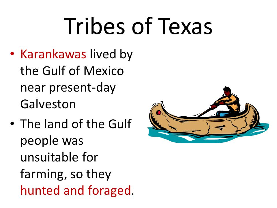 Tribes of Texas Karankawas lived by the Gulf of Mexico near present-day Galveston The land of the Gulf people was unsuitable for farming, so they hunted and foraged.