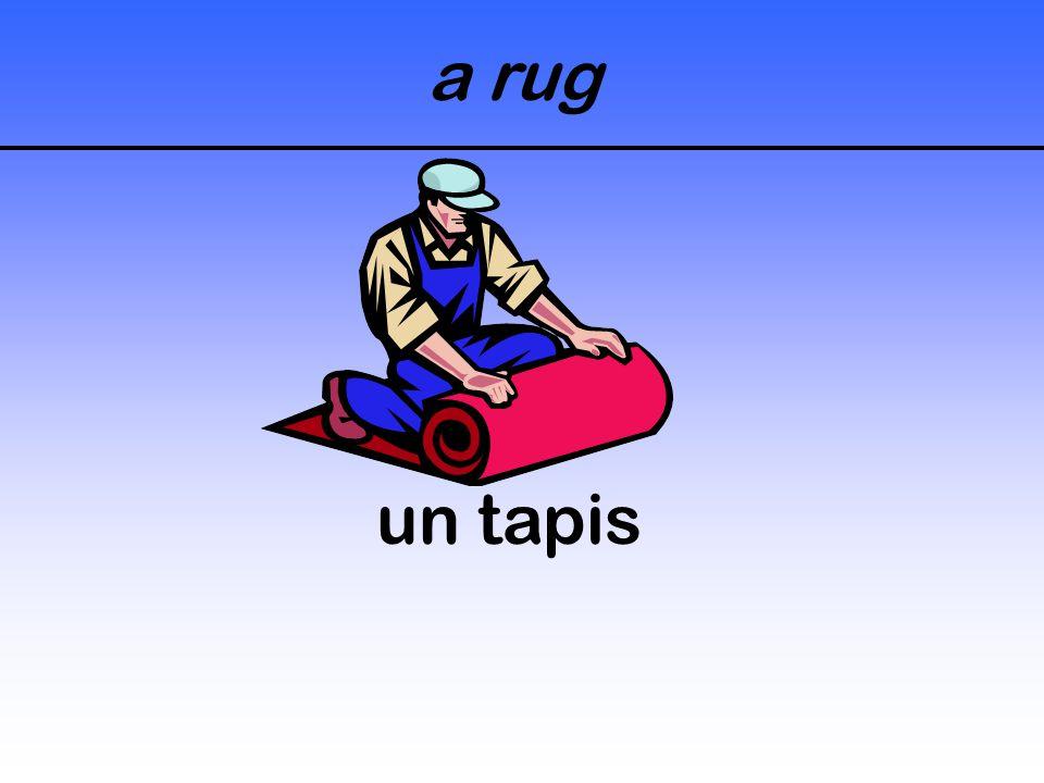 a rug un tapis