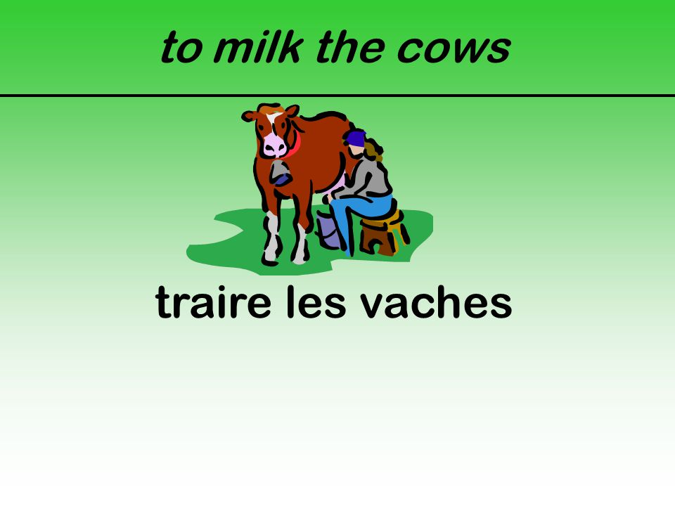 to milk the cows traire les vaches
