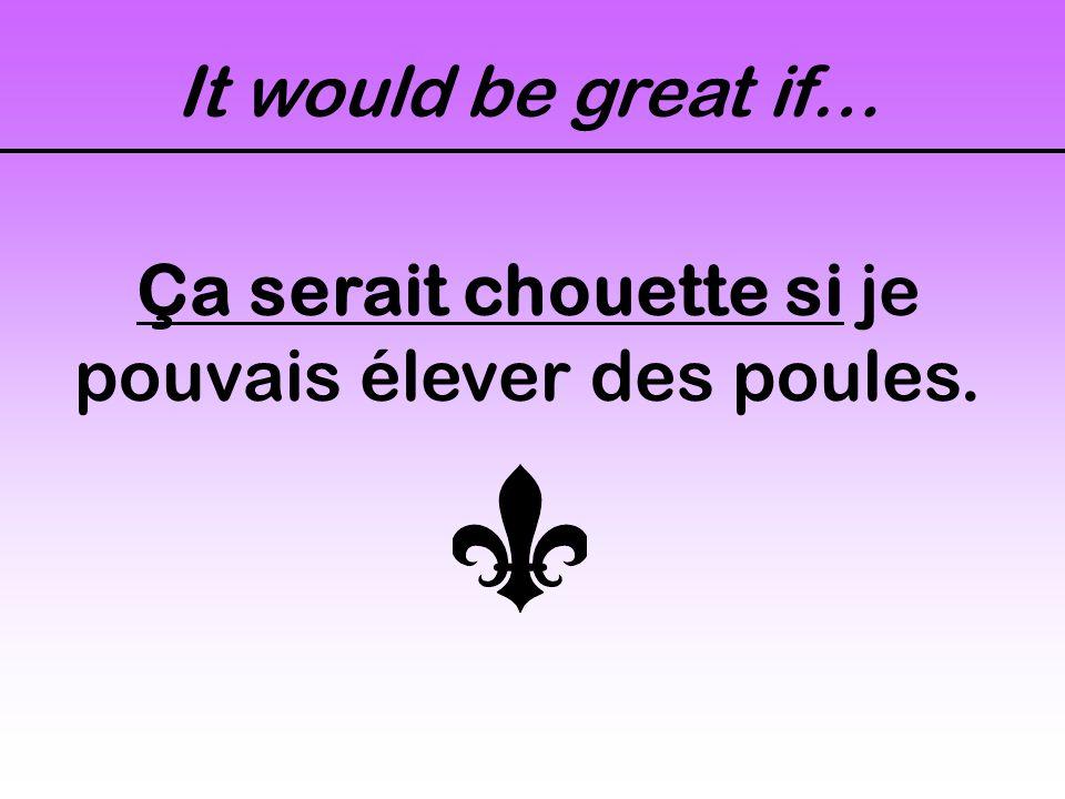It would be great if… Ça serait chouette si je pouvais élever des poules.