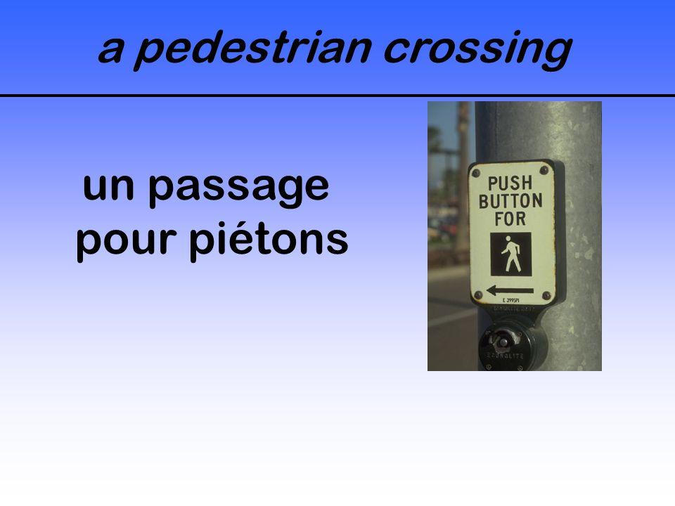 a pedestrian crossing un passage pour piétons