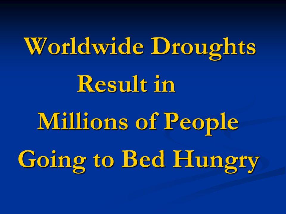 Drip Irrigation for Third World Kitchen Gardens