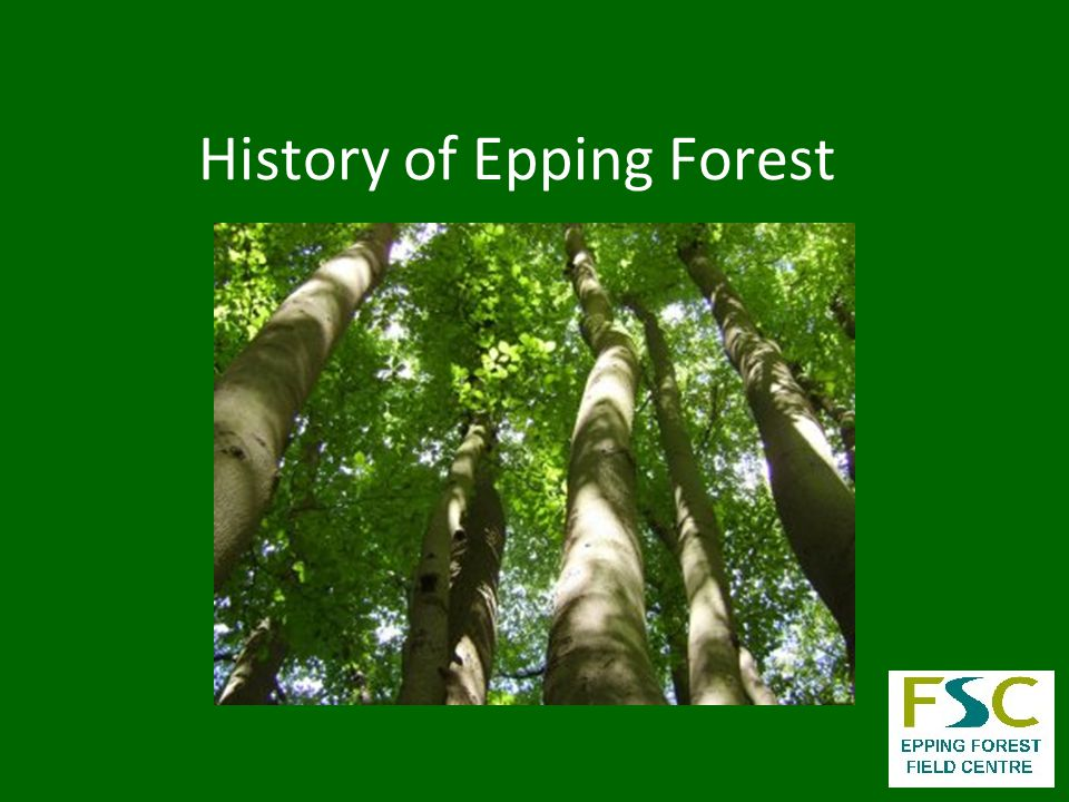 Location of Epping Forest 9 km from central London 4 km wide by 19km long 3, 195.8 Hectares large = 7,897 Acres = 31.96 km 2
