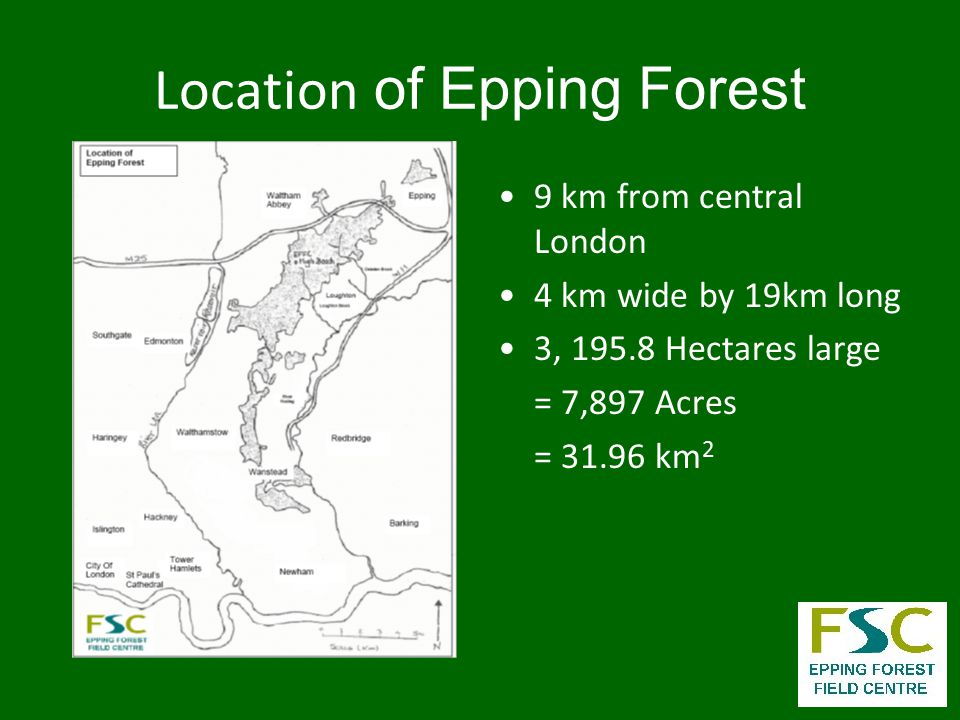What are the Habitats in Epping Forest.
