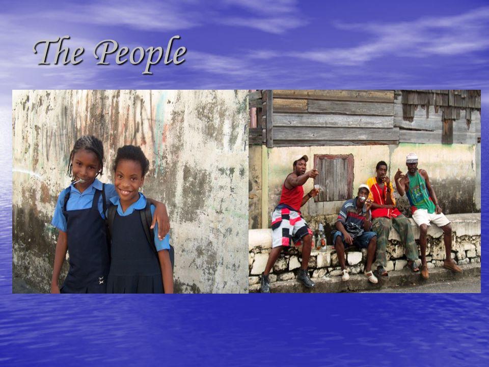 Population 109,200 (declining due to migration) Population 109,200 (declining due to migration) Language English, French Patois Language English, French Patois Ethnicity/Race: Black 66%, Mixed 19%, East Indian 6%, Carib Amerindian 2%, Other 7% Ethnicity/Race: Black 66%, Mixed 19%, East Indian 6%, Carib Amerindian 2%, Other 7% Religions: Anglican 42%, Methodist 21%, Roman Catholic 12%, other 25% (Hindu, Baha'i, Pentecostal) Religions: Anglican 42%, Methodist 21%, Roman Catholic 12%, other 25% (Hindu, Baha'i, Pentecostal) Life expectancy 72.9 (76.2 US) UNDP Life expectancy 72.9 (76.2 US) UNDP Infant mortality 23 per 1,000 live births (6.3 US) UNDP Infant mortality 23 per 1,000 live births (6.3 US) UNDP 83.1 adult literacy rate (99% US) UNDP 83.1 adult literacy rate (99% US) UNDP