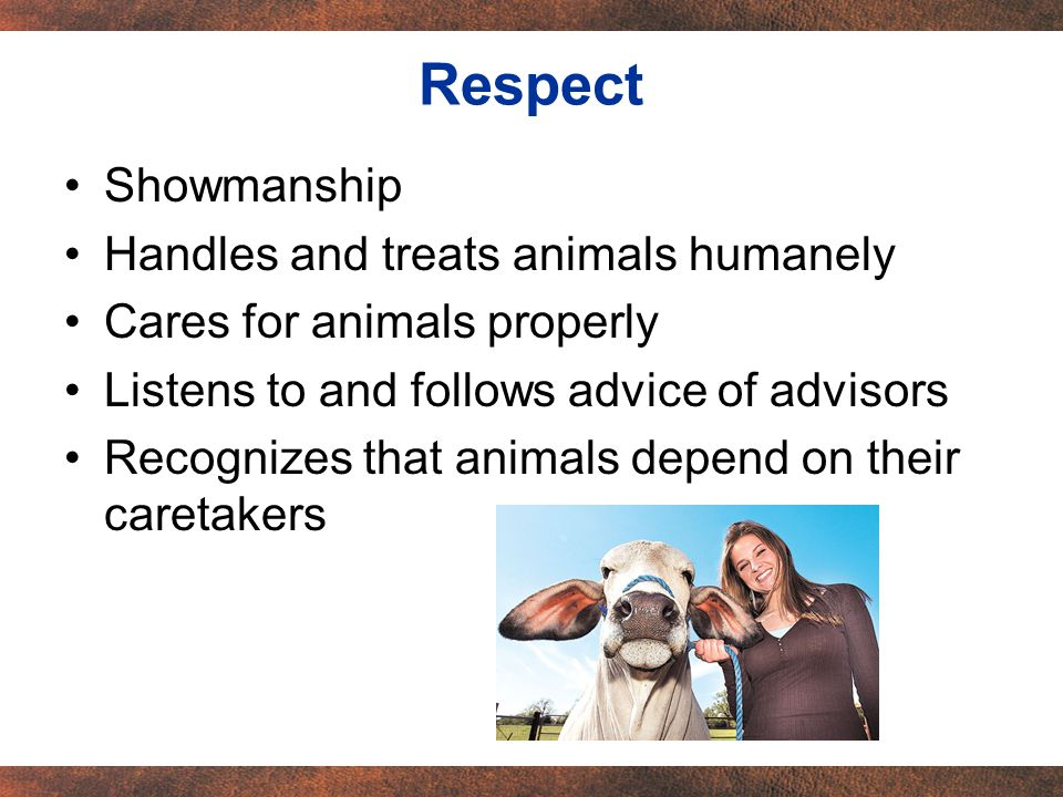 Showmanship Handles and treats animals humanely Cares for animals properly Listens to and follows advice of advisors Recognizes that animals depend on their caretakers Respect