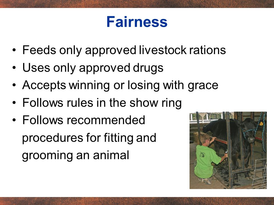 Feeds only approved livestock rations Uses only approved drugs Accepts winning or losing with grace Follows rules in the show ring Follows recommended procedures for fitting and grooming an animal Fairness