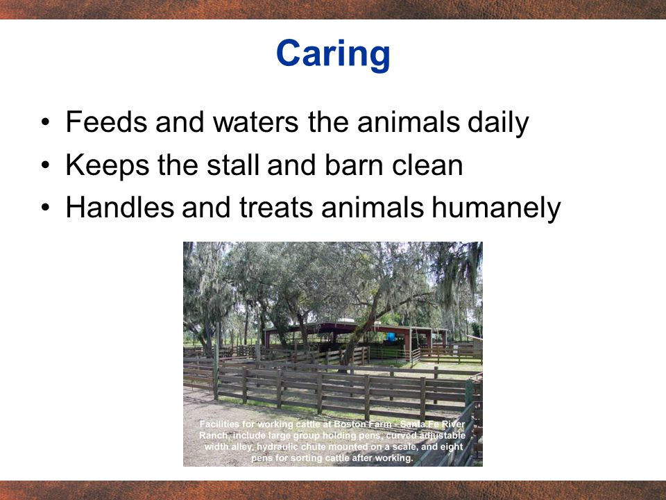 Feeds and waters the animals daily Keeps the stall and barn clean Handles and treats animals humanely Caring