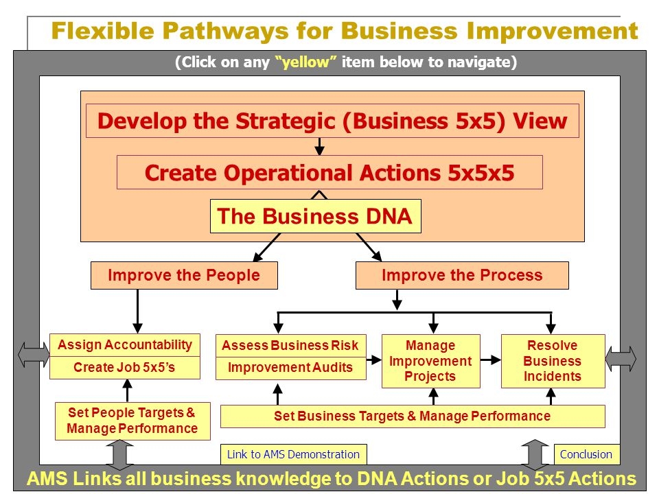 Develop the Strategic (Business 5x5) View Create Operational Actions 5x5x5 The Business DNA Flexible Pathways for Business Improvement Improve the Peo