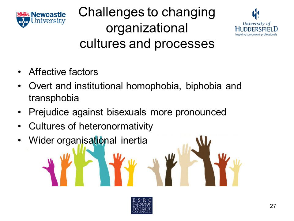 Challenges to changing organizational cultures and processes Affective factors Overt and institutional homophobia, biphobia and transphobia Prejudice against bisexuals more pronounced Cultures of heteronormativity Wider organisational inertia 27