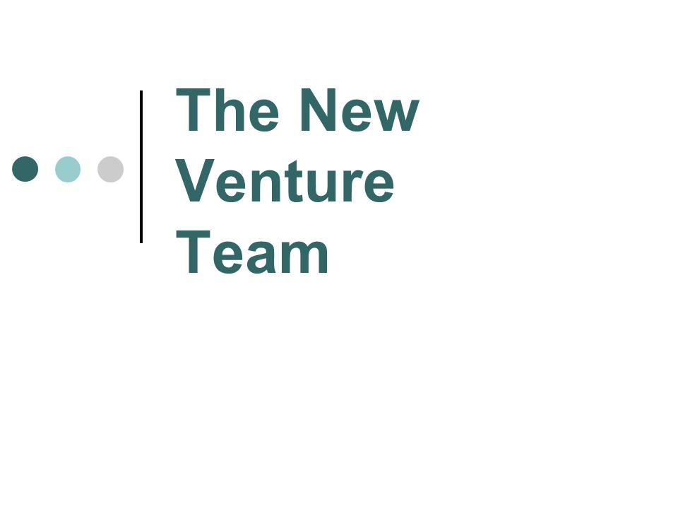 The New Venture Team