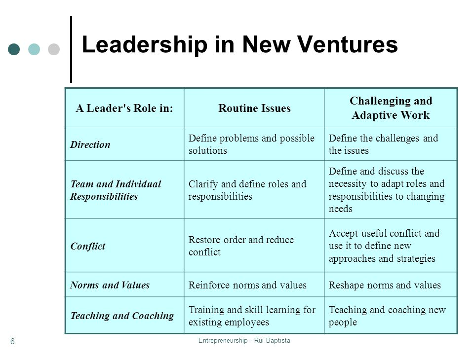 Entrepreneurship - Rui Baptista 6 Leadership in New Ventures A Leader's Role in:Routine Issues Challenging and Adaptive Work Direction Define problems
