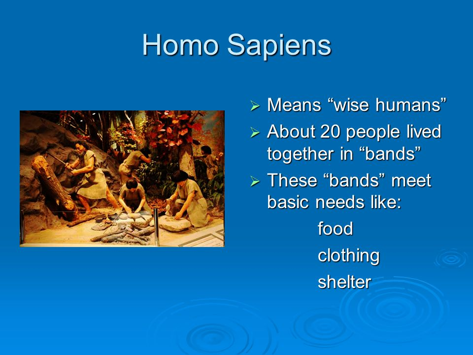 Homo Sapiens  Means wise humans  About 20 people lived together in bands  These bands meet basic needs like: food food clothing clothing shelter shelter