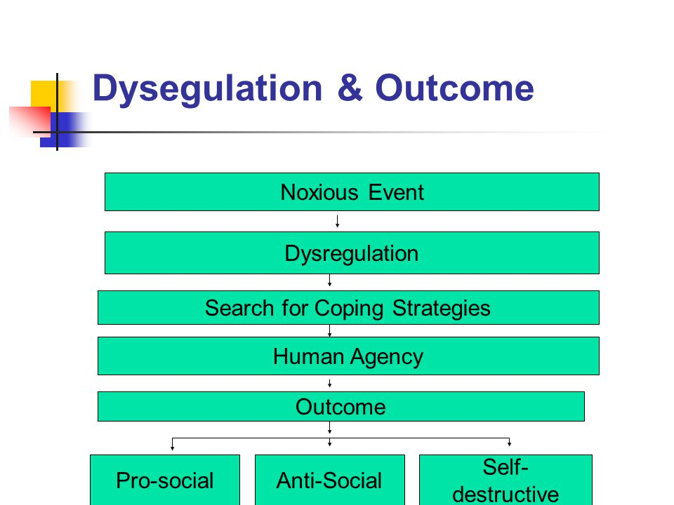 Dysegulation & Outcome Noxious Event Search for Coping Strategies Human Agency Outcome Pro-socialAnti-Social Self- destructive Dysregulation