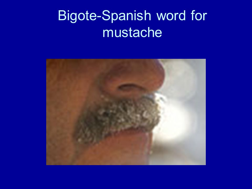 Bigote-Spanish word for mustache