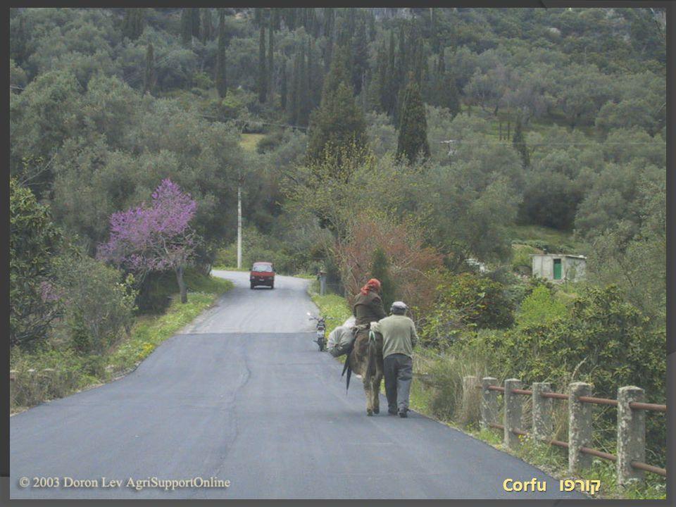 Corfu קורפו