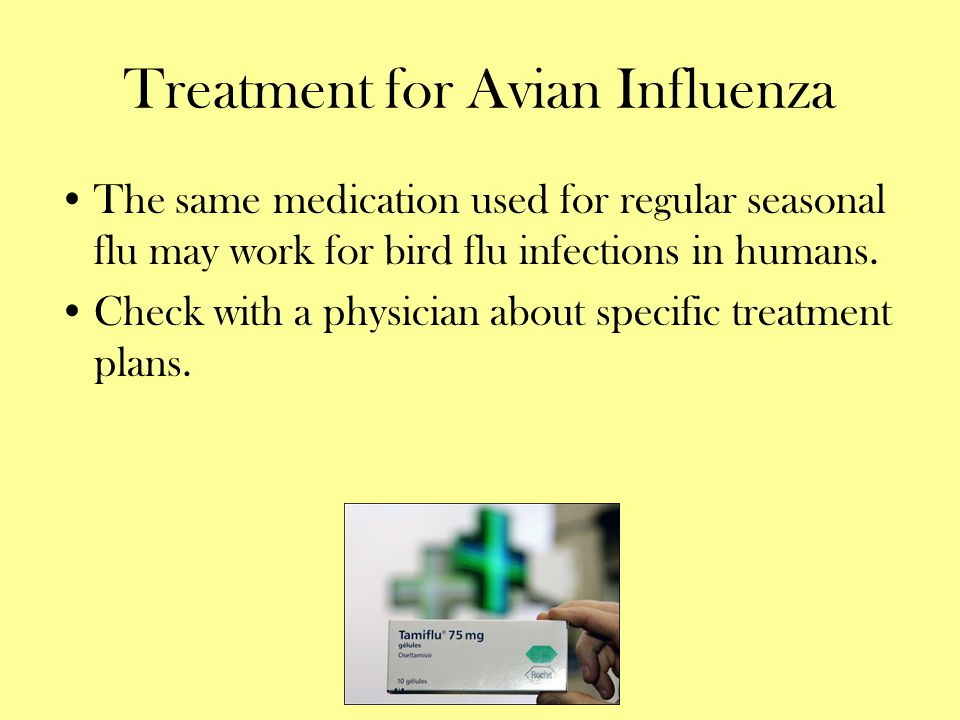 Treatment for Avian Influenza The same medication used for regular seasonal flu may work for bird flu infections in humans. Check with a physician abo