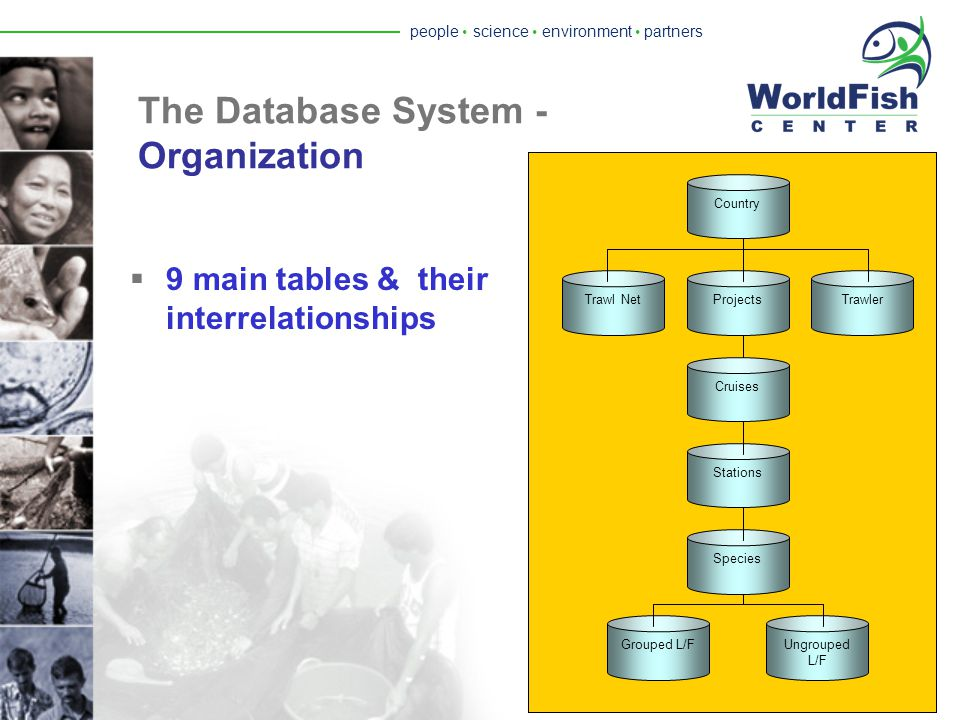 people  science  environment  partners The Database System - Fisheries Information System & Tools (FiRST)  Designed as data container for extant trawl surveys.