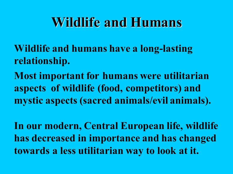 Wildlife and Humans Wildlife and humans have a long-lasting relationship.