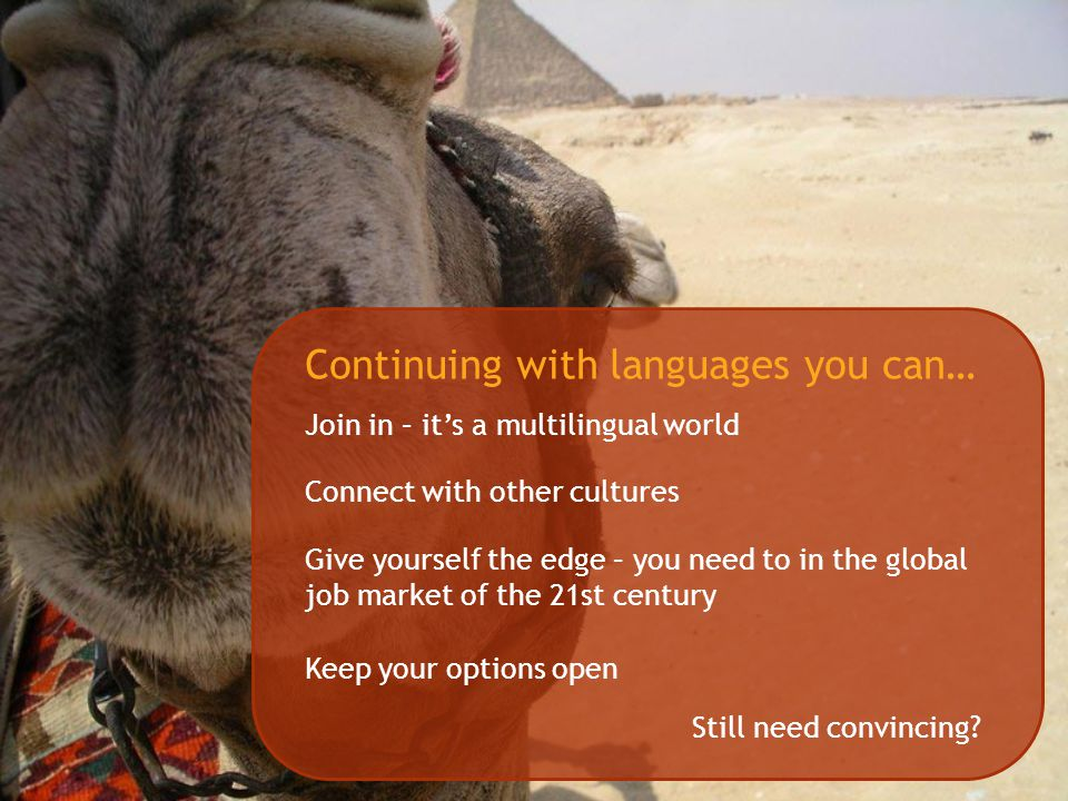Continuing with languages you can… Join in – it's a multilingual world Connect with other cultures Give yourself the edge – you need to in the global