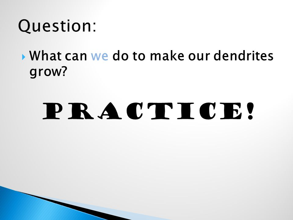  What can we do to make our dendrites grow PRACTICE!