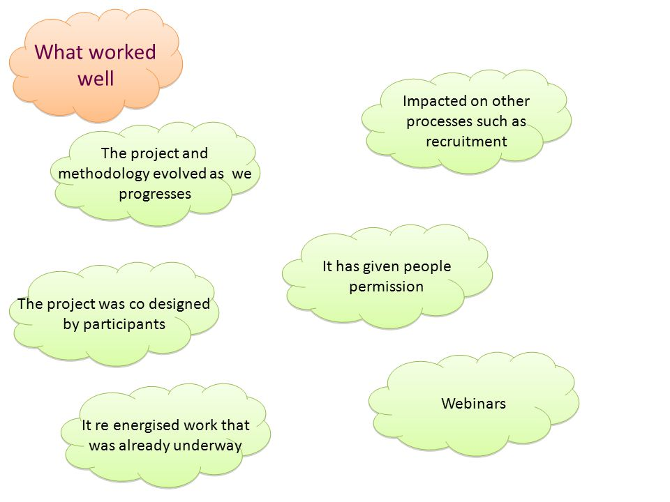 What worked well The project and methodology evolved as we progresses The project was co designed by participants It re energised work that was already underway Impacted on other processes such as recruitment It has given people permission Webinars