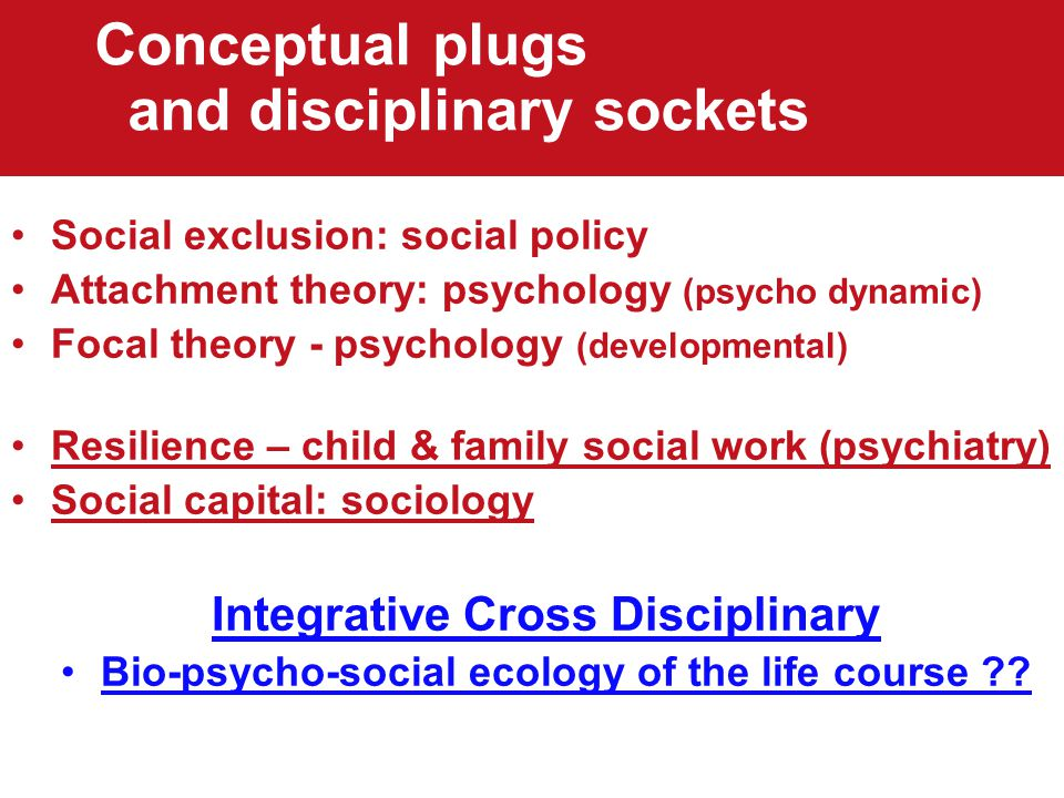Conceptual plugs and disciplinary sockets Social exclusion: social policy Attachment theory: psychology (psycho dynamic) Focal theory - psychology (developmental) Resilience – child & family social work (psychiatry) Social capital: sociology Integrative Cross Disciplinary Bio-psycho-social ecology of the life course
