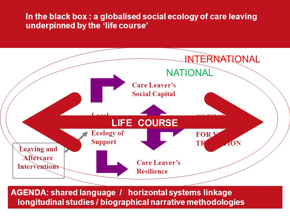 In the black box : a globalised social ecology of care leaving underpinned by the 'life course' Leaving and Aftercare Interventions COPING CAPACITY FOR YOUTH TRANSITION Care Leaver's Social Capital Care Leaver's Resilience Local Social Ecology of Support AGENDA: shared language / horizontal systems linkage longitudinal studies / biographical narrative methodologies.