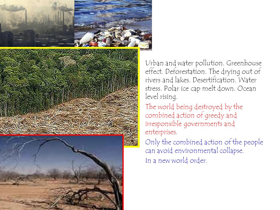 Urban and water pollution. Greenhouse effect. Deforestation.