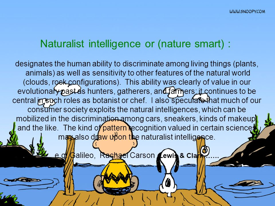 Naturalist intelligence or (nature smart) : designates the human ability to discriminate among living things (plants, animals) as well as sensitivity to other features of the natural world (clouds, rock configurations).