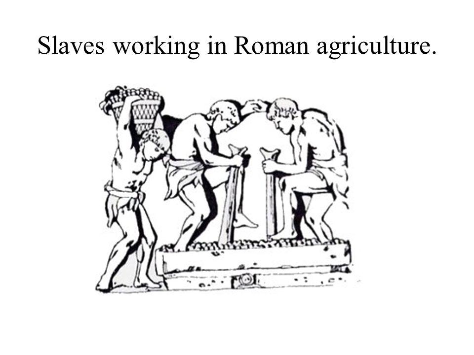 Character of slavery varied.