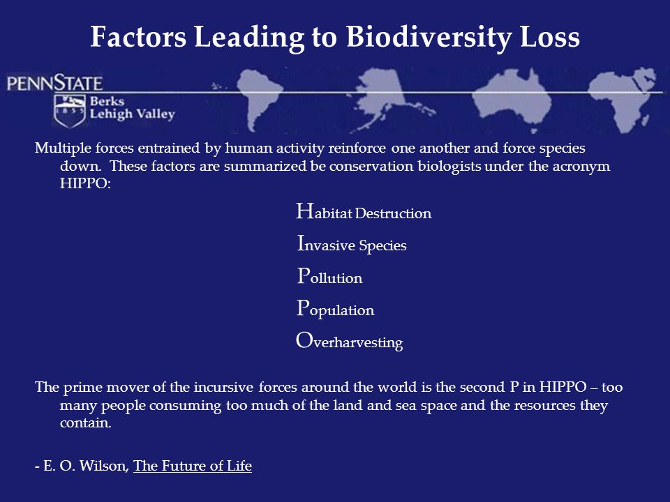 Factors Leading to Biodiversity Loss Multiple forces entrained by human activity reinforce one another and force species down. These factors are summa