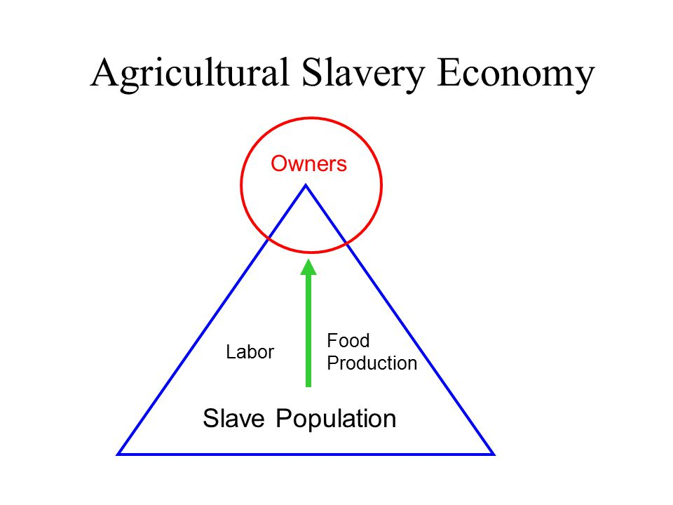 Agricultural Slavery Economy Owners Slave Population Labor Food Production