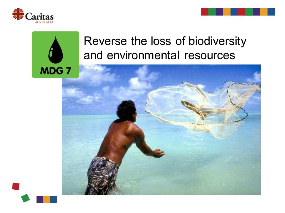 Reverse the loss of biodiversity and environmental resources