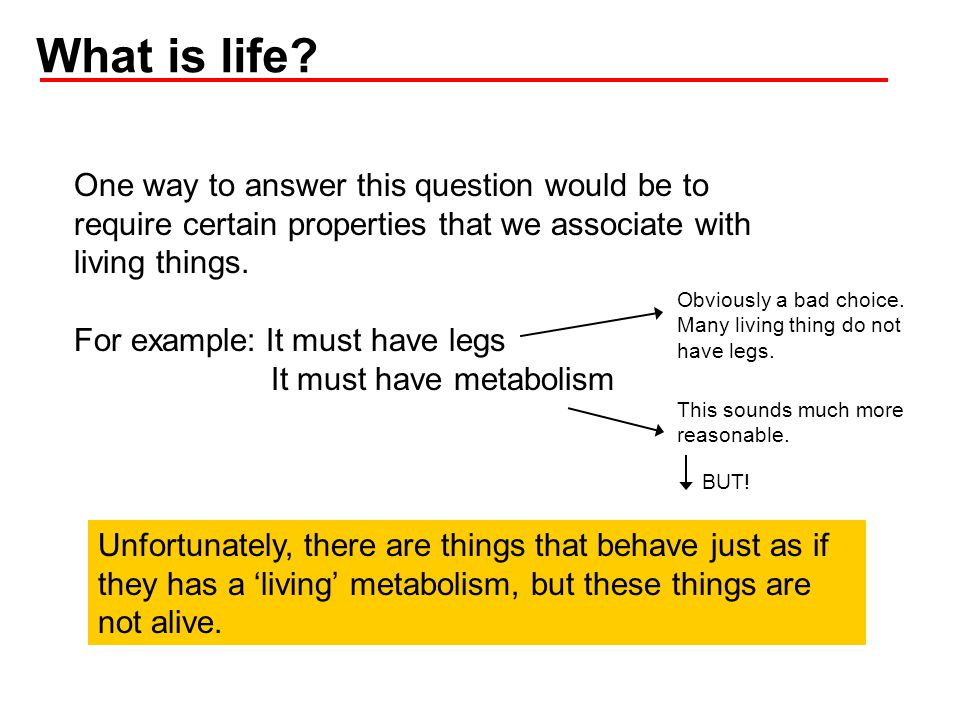 What can be considered to have metabolism but not life.