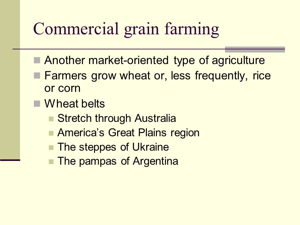 Commercial grain farming Another market-oriented type of agriculture Farmers grow wheat or, less frequently, rice or corn Wheat belts Stretch through