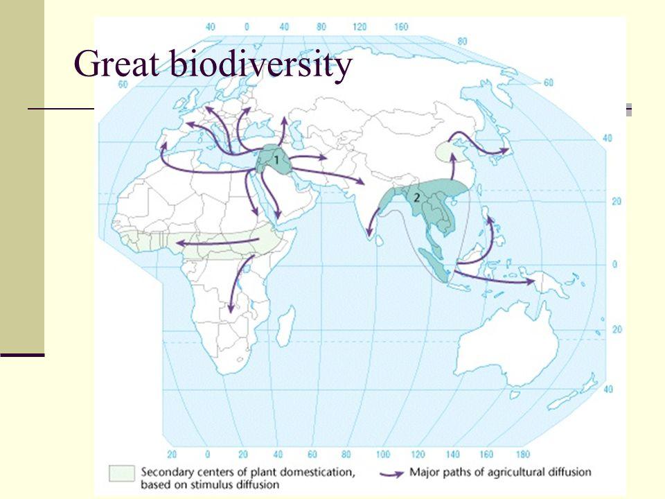 Great biodiversity