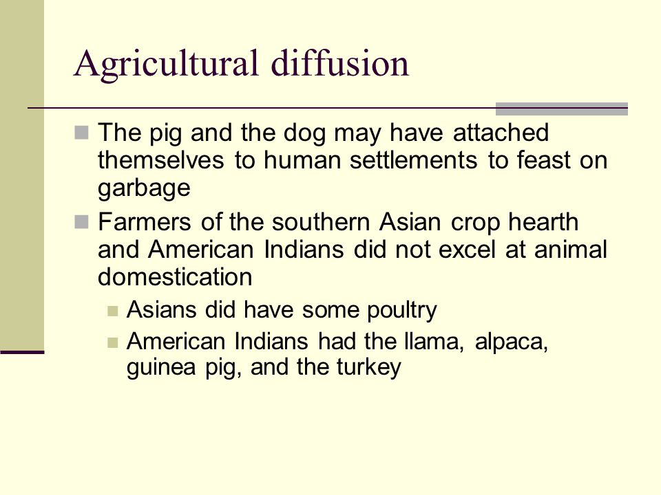 Agricultural diffusion The pig and the dog may have attached themselves to human settlements to feast on garbage Farmers of the southern Asian crop he