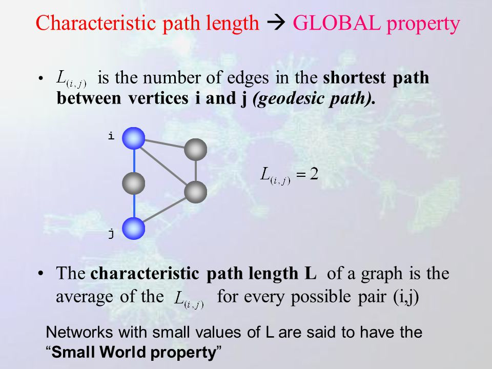Network parameters Diameter Maximum distance between any pair of nodes. Characteristic path length Connectivity Number of neighbours of a given node: