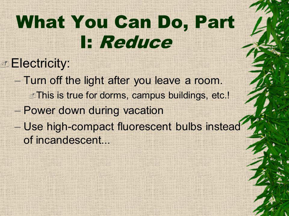 Compact Fluorescent vs.
