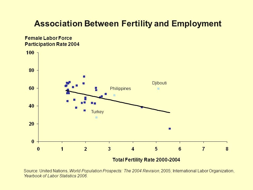 Female Labor Force Participation Rate 2004 Source: United Nations, World Population Prospects: The 2004 Revision, 2005; International Labor Organizati