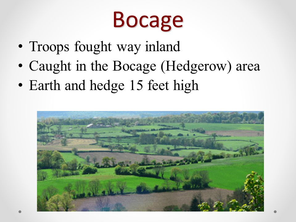 Bocage Troops fought way inland Caught in the Bocage (Hedgerow) area Earth and hedge 15 feet high