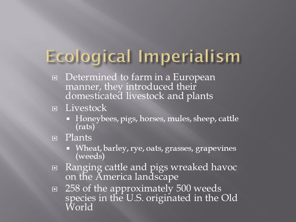  Determined to farm in a European manner, they introduced their domesticated livestock and plants  Livestock  Honeybees, pigs, horses, mules, sheep