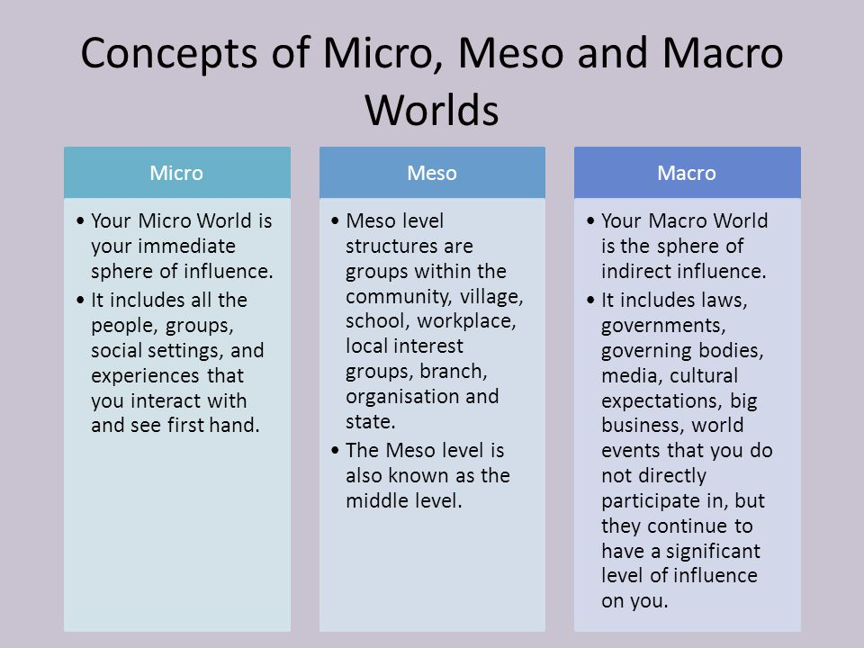 Concepts of Micro, Meso and Macro Worlds Micro Your Micro World is your immediate sphere of influence.