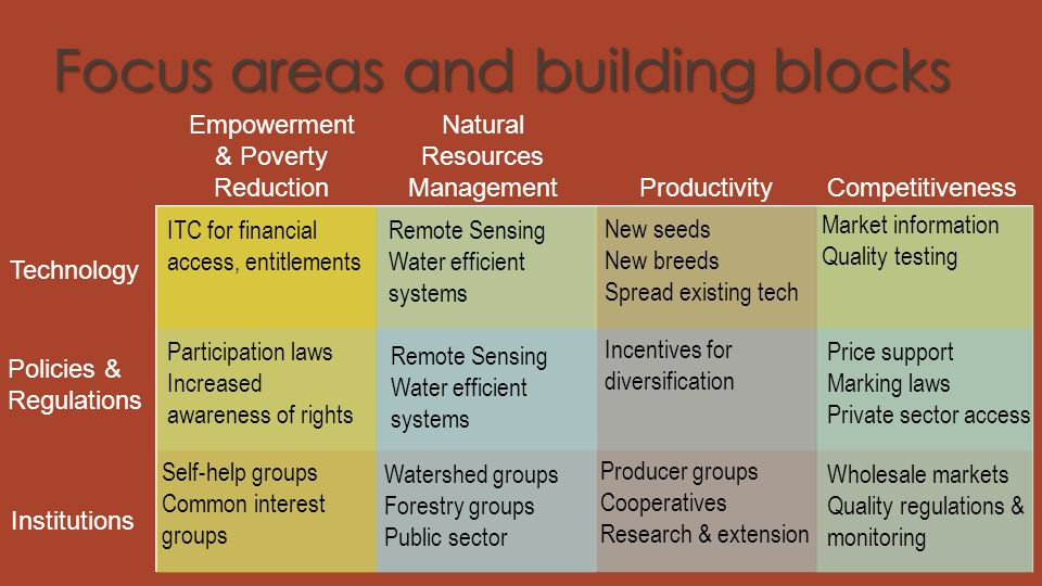 Focus areas and building blocks Empowerment & Poverty Reduction Productivity Natural Resources Management Competitiveness Technology Policies & Regula