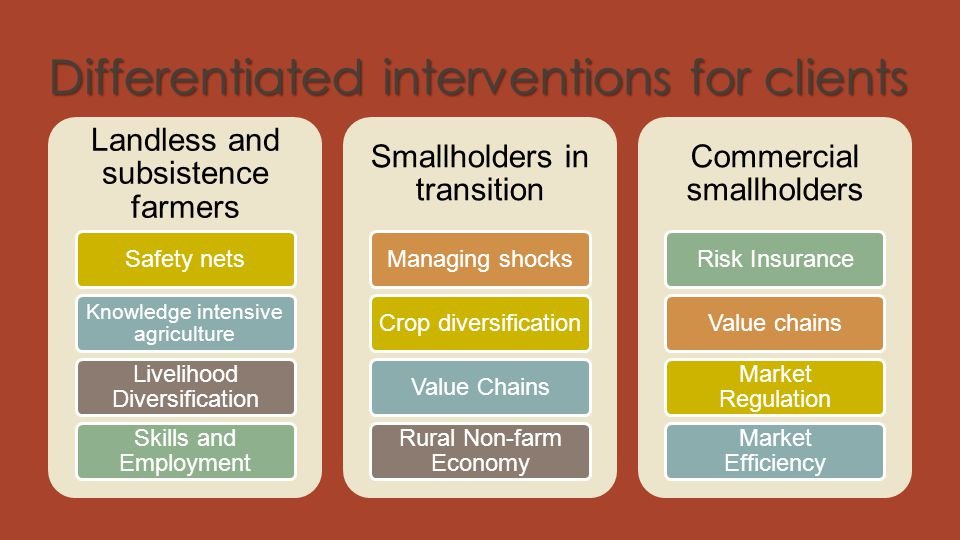 Differentiated interventions for clients Landless and subsistence farmers Safety nets Knowledge intensive agriculture Livelihood Diversification Skill