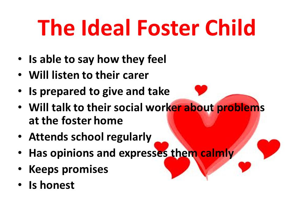 The Ideal Foster Child is...