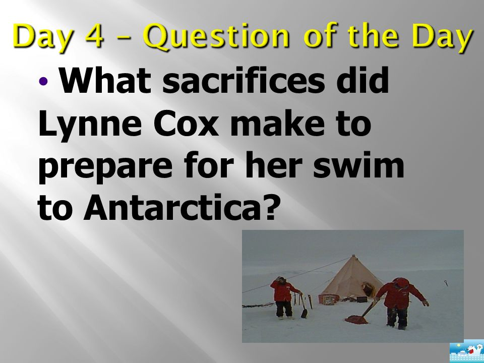 What sacrifices did Lynne Cox make to prepare for her swim to Antarctica?
